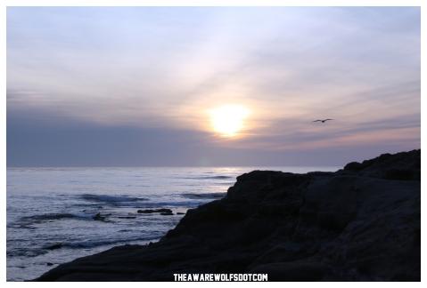 February 14th, 2013. San Diego, California.
